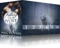 Book Cover: Falling For A Wolf Box Set