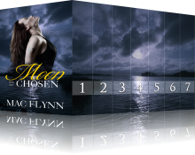 Book Cover: Moon Chosen Box Set