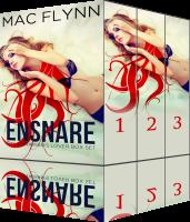 Book Cover: Ensnare the Librarian Box Set