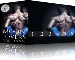Book Cover: Moon Lovers Box Set