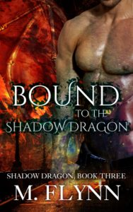 Book Cover: Bound to the Shadow Dragon
