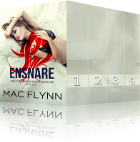 Book Cover: Ensnare the Passenger Box Set